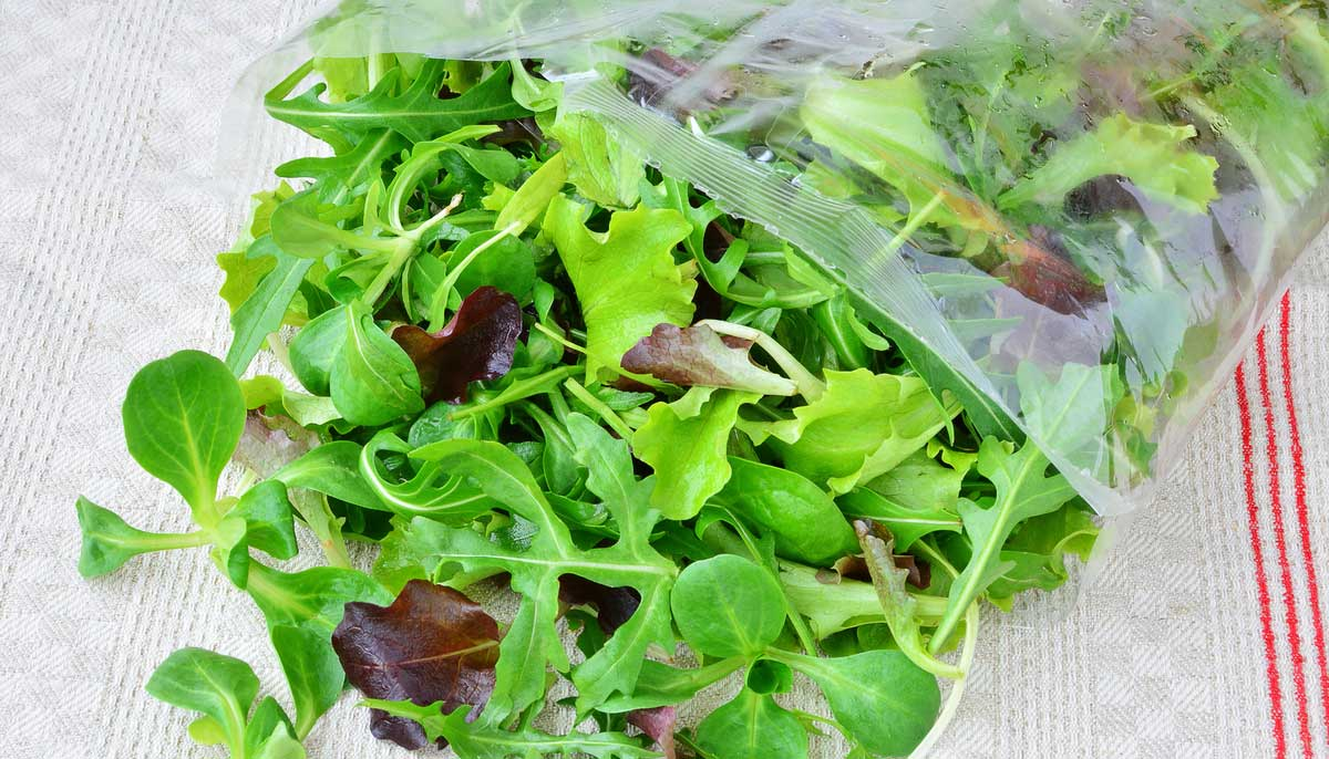 No More Wasted Greens: How to Keep Them Fresh Longer